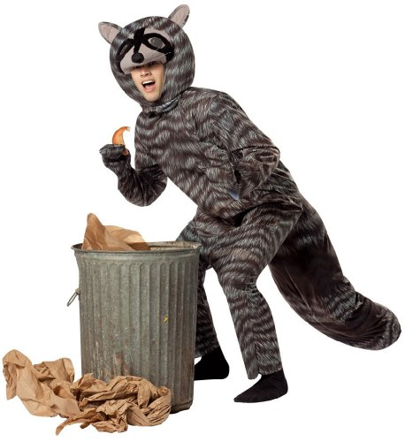 Raccoon Adult Costume Size One Size Fits Most Adults