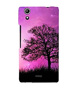 Beautiful Sky 3D Hard Polycarbonate Designer Back Case Cover for Micromax Canvas Selfie 2 Q340