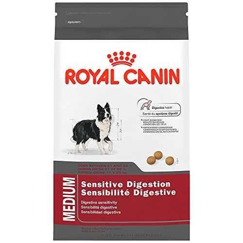 royal canin health nutrition medium sensitive digestion. Black Bedroom Furniture Sets. Home Design Ideas