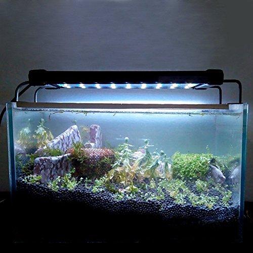 echoaccr-72-acuario-del-led-lampara-de-la-luz-del-soporte-extensible-blanca-luz-azul-2-modos-de-11w-