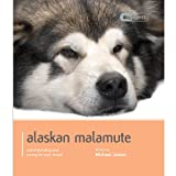 Michael James Alaskan Malamute (Dog Expert)