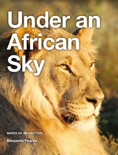 Benjamin Pearce - Under an African Sky