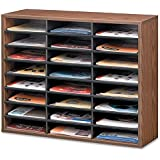 Fellowes 24-Compartment Literature Organizer, Letter Size, Medium Oak (25043)