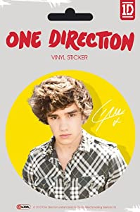 Official One Direction 1d Large Vinyl Sticker - Liam Color by Global Merchandising