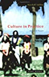 img - for Culture in Practice: Selected Essays by Marshall David Sahlins (2005-05-03) book / textbook / text book