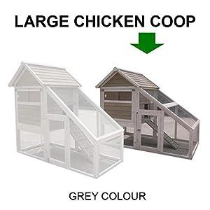 FeelGoodUK Poulailler 9 volailles Rampe d'accès et tiroir à déjections et mécanisme de verrouillage innovant Menthe verte Large
