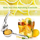 BoxLegend Premium Quality Stainless Steel Press Lemon Lime orange Squeezer Citrus Manual Juicer Silver