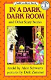 img - for In a Dark, Dark Room and Other Scary Stories [IN A DARK DARK ROOM & OTHER SC] book / textbook / text book