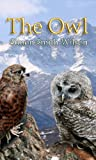 img - for The Owl book / textbook / text book