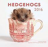 img - for Hedgehogs 2016 Mini: 16-Month Calendar September 2015 through December 2016 book / textbook / text book