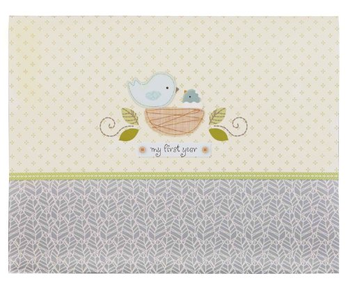 Baby Girl Record Book front-9444