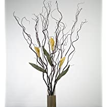 Curly Willow and Yellow Calla Lilies