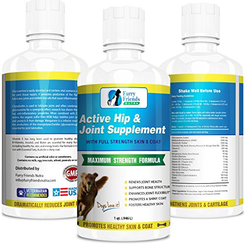 Best Liquid Glucosamine For Dogs With Chondroitin & Msm - Extra Strength Dog Supplement For Joints - Liquid Joint Supplement For Dogs Absorb Faster Than Chewables - Maximum Hip And Joint Health Support For Large And Small Dogs - Full Strength Skin & Coat