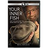 Your Inner Fish [DVD] [Region 1] [US Import] [NTSC]