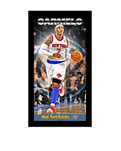 Steiner Sports Memorabilia NBA New York Knicks Carmelo Anthony Player Profile Framed Photo, Multi, 1...