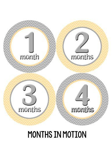 Months in Motion 013 Baby Month Stickers - Gender Neutral Chevron - Months 1-12