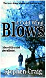 A Cold Wind Blows (Paul Anderson Book 1) (English Edition)