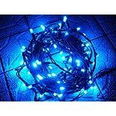 LEDイルミネーション イルミナライン・プロ 青 ブルー 100球 高性能防水機能  六本木ヒルズ ミッドタウン