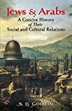 Jews and Arabs: A Concise History of Their Social and Cultural Relations (Jewish, Judaism)