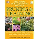 RHS Pruning & Trainingby Christopher Brickell