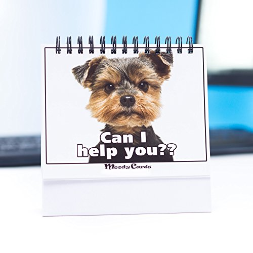 Funny Office Gifts – Doggy Moodycards! Great Cubicle Accessories – Make Everyone Laugh with These Lovable Pets -Hilarious Dog Pictures Tells Everyone How You Feel – Fun, Hilarious, Useful & Adorable
