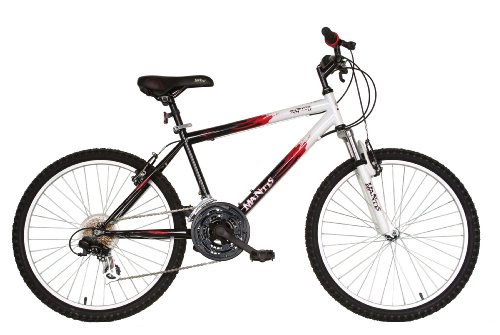 Mantis Raptor Boys 24- Inch Bike, White/Black - schwinn cruiser