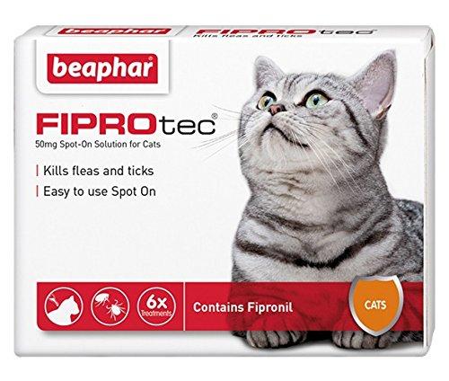beapharr-fiprotecr-kill-flea-ticks-spot-on-drop-treatment-protection-for-cats-6-treatments-cat