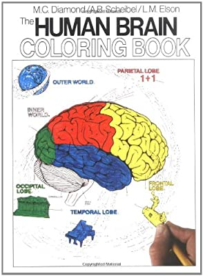 Biology Book :: The Human Brain Coloring Book (Cos, 306) from Collins Reference