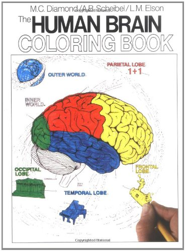 Biology Coloring Book Princeton Review : Book cos you come right great the human brain coloring