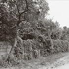 Seth Schwarz - Jabel - Acker Records - Acker 45