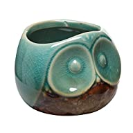 3″ Turquoise & Brown Small Owl Design Ceramic Succulent Planter / Flower Bud Pot / Mini Decorative…
