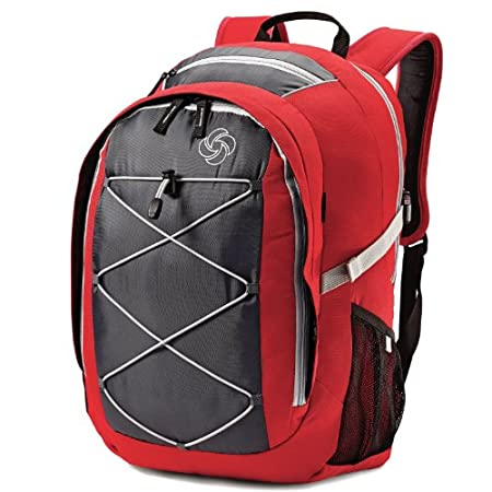 Samsonite Wander Merlin Backpack