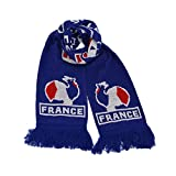 *CLEARANCE SALE* Euro 2016 Football France Fans Scarf Merchandise