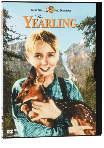 Cover art for  The Yearling