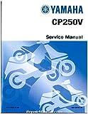 LIT-11616-19-48 2006 2007 2008 Yamaha Morphous Scooter CP250 Service Manual
