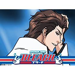 Bleach (English Dubbed) Season 15