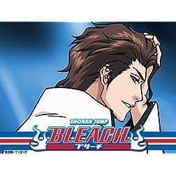 Bleach (English Dubbed) Season 15