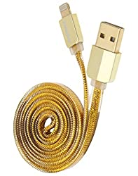 Chevron Charge & Sync Lightning Data Cable For iPhone 6S/iPhone 6S Plus/iPhone 5/5S/5C/iPod/iPad - 1 Meter (Gold)