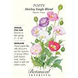 Shirley Single Blend Poppy Seeds - .50 grams