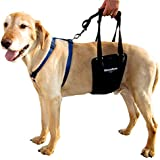 GingerLead Dog Support & Rehabilitation Harness - Medium (Lg Male) Sling