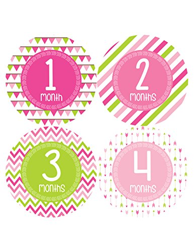 Months in Motion 377 Monthly Baby Stickers Baby Girl Month 1-12 Milestone