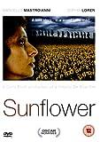 echange, troc Sunflowers [Import anglais]
