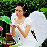 Alcoa Prime EZLIFE Adults Kids Feather Fairy Angel Wings Hen Night Party Event Supplies Fancy Dress Up ZH01206