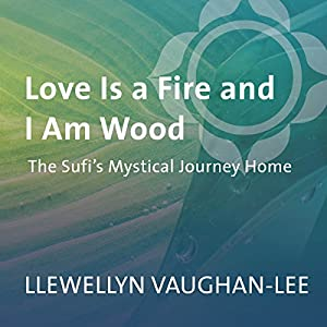 Love Is a Fire and I Am Wood Speech
