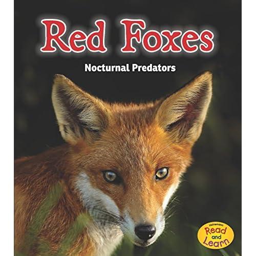 Red Foxes: Nocturnal Predators Rissman, Rebecca
