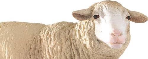 PAPO (パポ社) メリノヒツジ 【51041】 Farm Animals