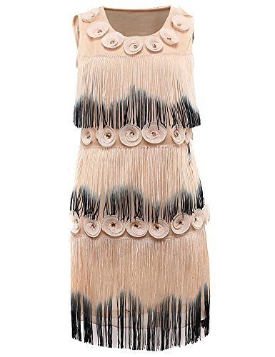 KAYAMIYA Women's Ombre Fringe Applique Layers Tassel Floral Flapper Gatsby Costume Prom Dress