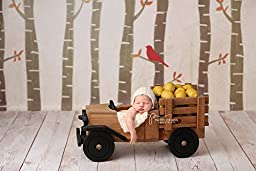 Fall Photography Backdrops Vinyl, Autumn Woodland Photography Background for Girls Boys Baby Newborn Children Kids HSD BACKDROPS 7\'x5\'