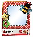 Sassy Developmental Crib and Floor Mirror