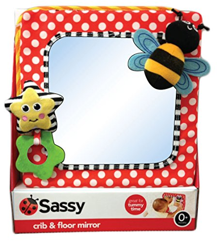 Sassy Developmental Crib and Floor Mirror, Red (Discontinued by Manufacturer) - 1